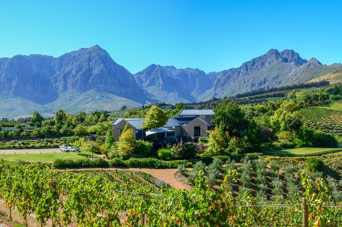 Full Day Private Wine tour of Stellenbosch and Franschoek wine region