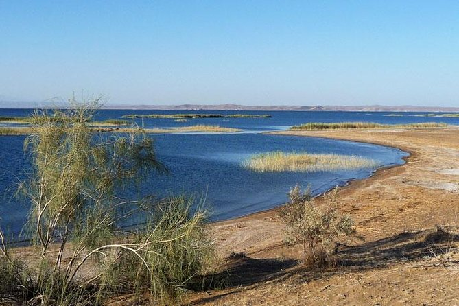 Lake Aydarkul