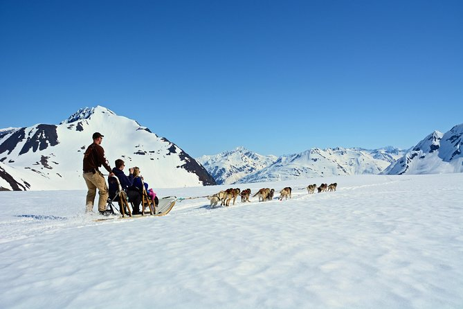 Summer Glacier Dogsledding Tour from Girdwood