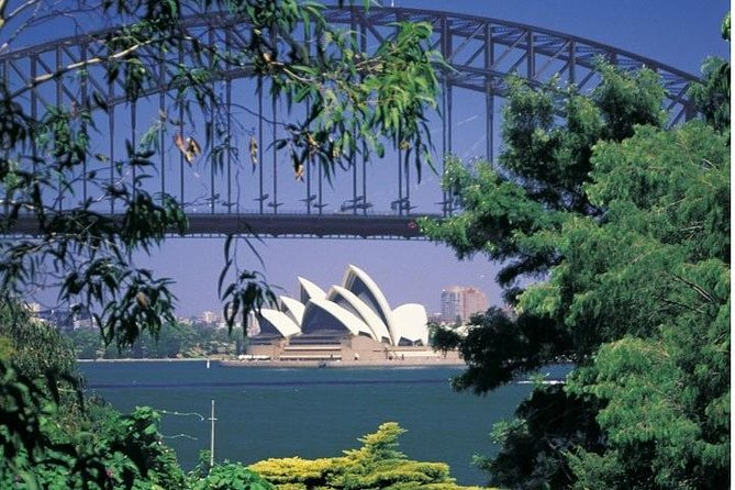 Sydney Highlights Half Day Tour Private Tour