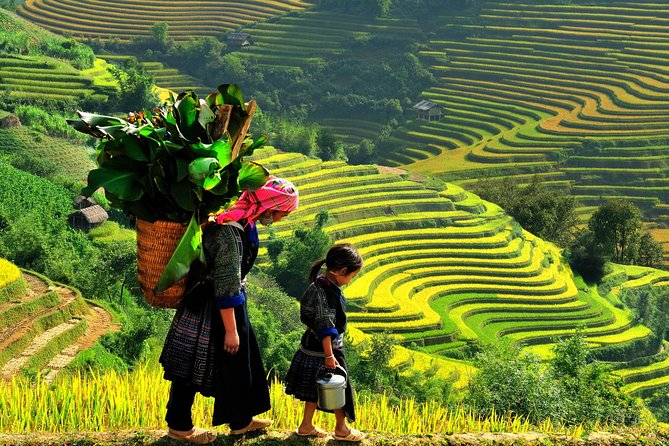 Sa Pa 2-Day Easy Trek and Homestay Bus Tour from Hanoi