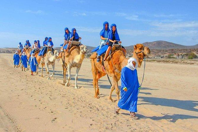 From Agadir Port 2 Hours Camel Ride