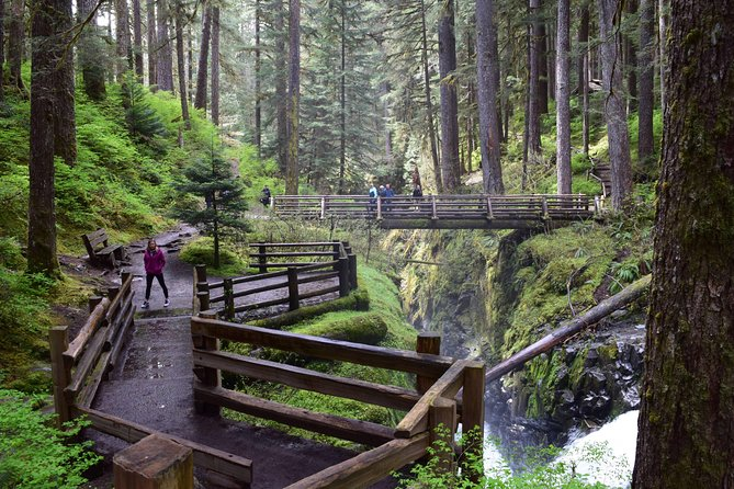 Sol Duc Falls Guided Tour in Olympic National Park