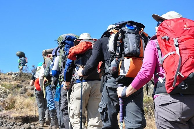 6 Day Scenic Mount Kilimanjaro Climb Machame Route Tour