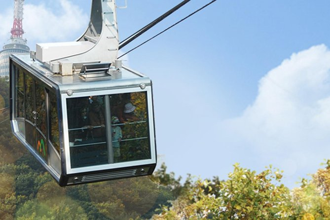 Seoul City Tour Bus Panorama Course & Round Namsan Cable Car