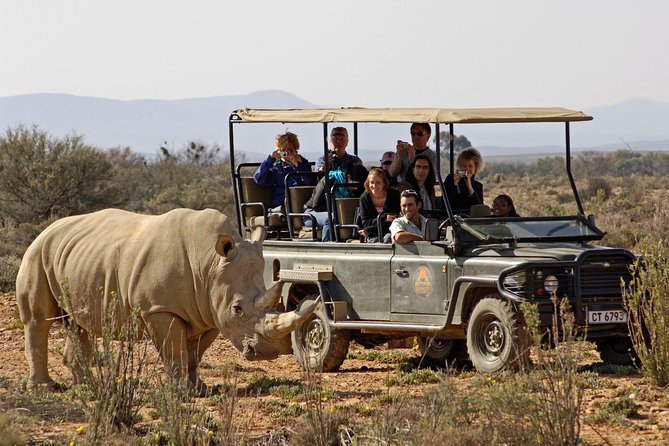 vente chaude authentique 2019 meilleures ventes quantité limitée Aquila Private Game Reserve: Sunset Safari 2019 - Cape Town