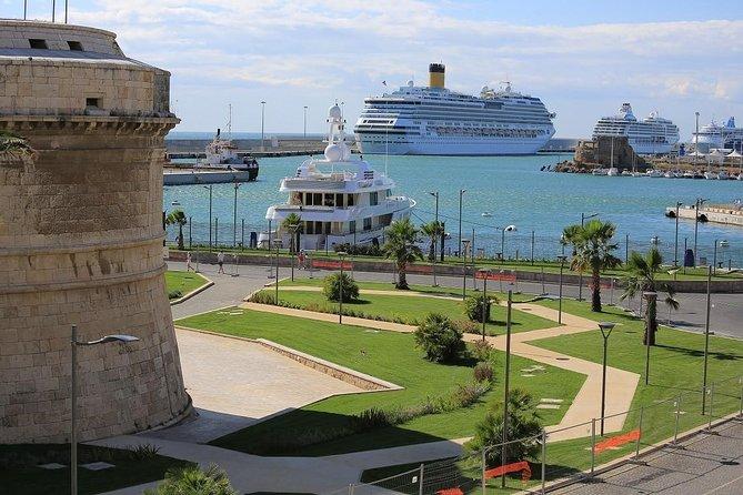Private Shore Excursion from Civitavecchia Rome Port to Rome and Vatican City