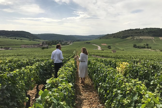 Private Full Day Tour to the Heart of Burgundy