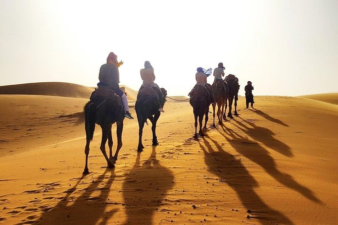 Desert tour from Marrakesh to Merzouga and c amel ride 3 days