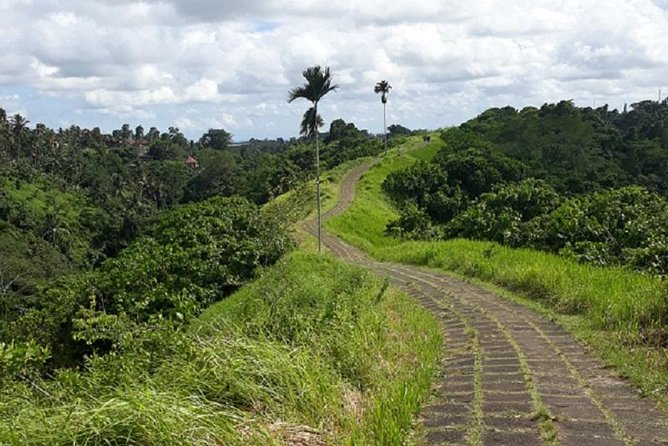 Private Ubud Walking Tour