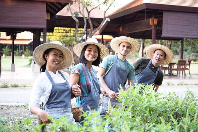 Half Day Thai Cooking Class in Organic Farm - Evening Session