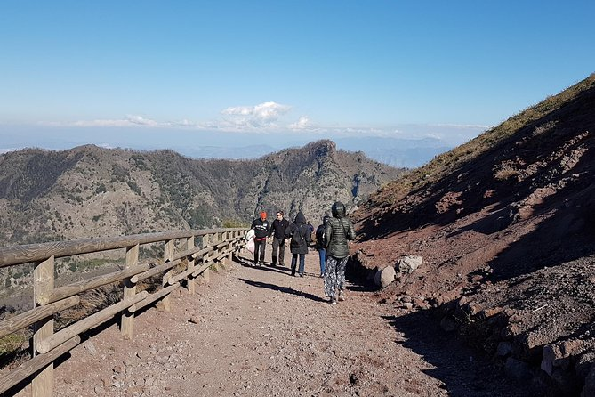 Vesuvius: Half Day Trip from Naples
