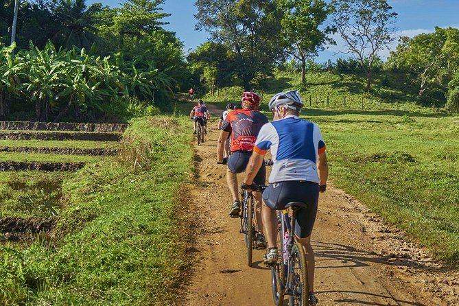 Village Cycling Tour with Lunch