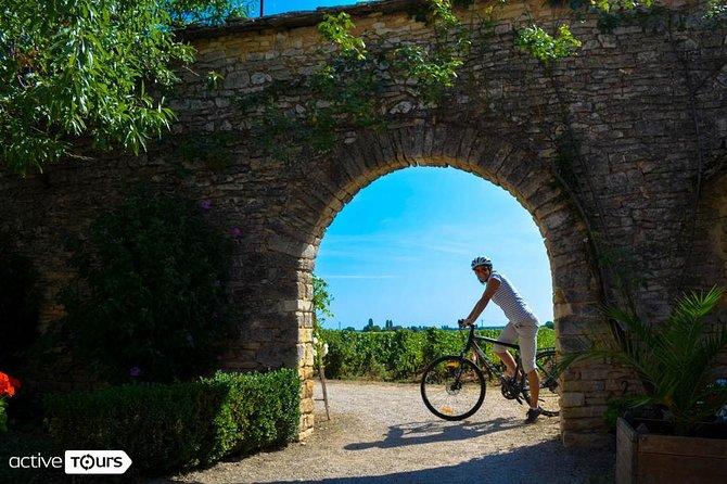 Guided week Bike Tour in France, Burgundy wine region