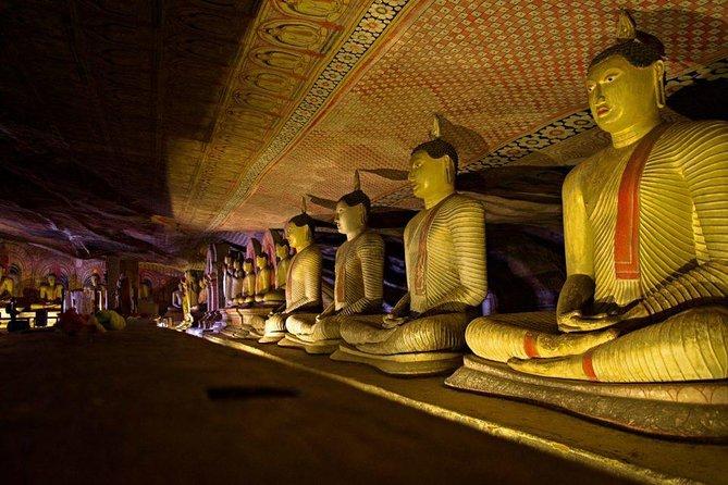 Dambulla Cave Temple & Village Tour