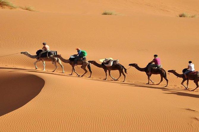3 days tour from Fez to Marrakech through merzouga desert and camel ride