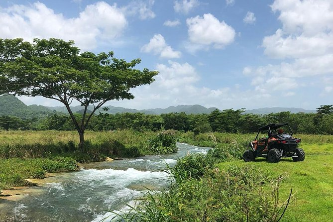 Rastasafari Experience from Montego Bay
