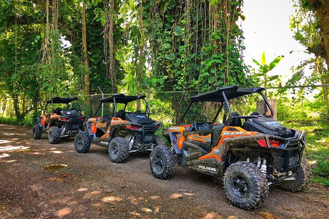 Rastasafari Experience from Montego Bay