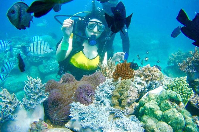 Shared Tour Nha Trang Island Hopping By SpeedBoat Plus Diving