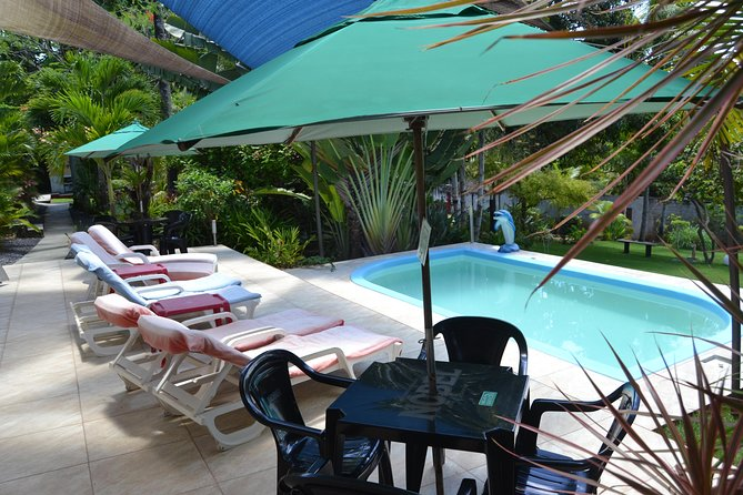 One day in paradies, relax and swim in our troical garden (lunch included) photo 7