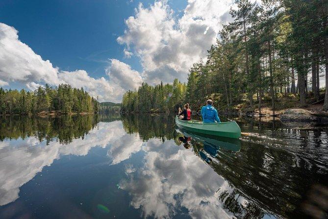 Remando com lobos. Passeio guiado de canoa.