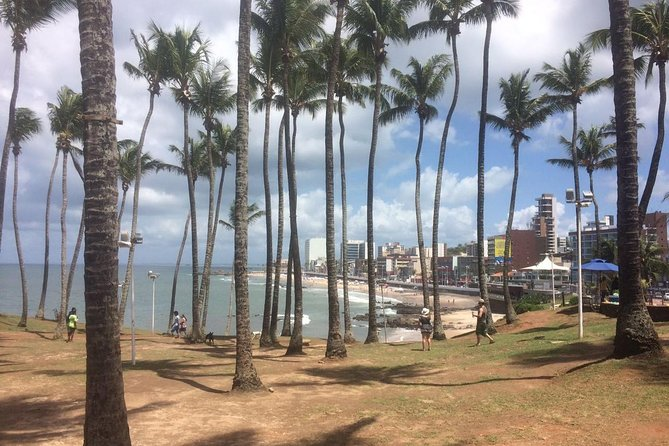 Salvador Praia Tour The spectacular scenic drive around the Peninsula photo 4