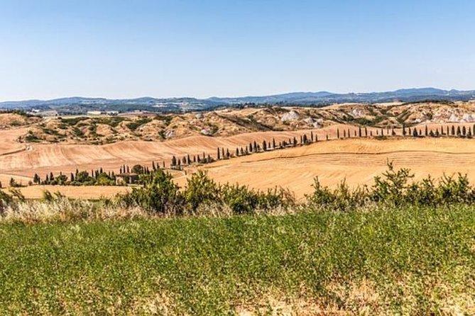 Siena and San Gimignano from FLORENCE, PISA, SIENA, MONTEPULCIANO, LIVORNO, ROME.