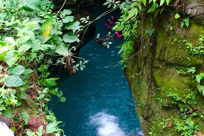 The Ultimate Rush: Moalboal Sardine Run and Kawasan Canyoneering photo 6