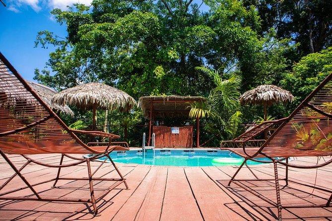 2-Day Amazon Jungle Tour at Avatar Amazon Lodge