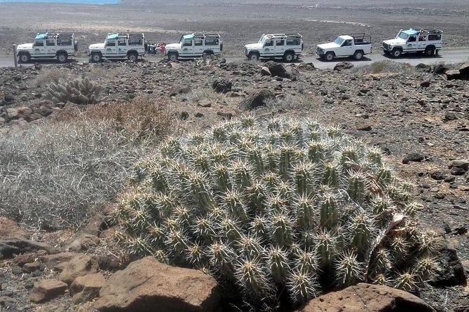 Jeep Tour to Cotillo and northern area of Fuerteventura, Fuerteventura, ESPAÑA