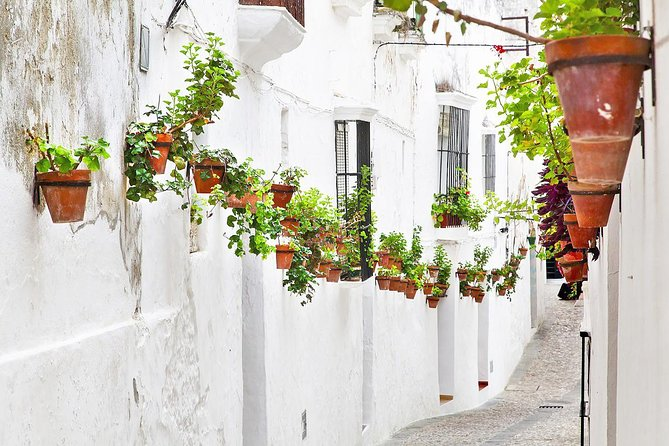 Private Day Trip from Seville: The White Towns of Andalusia photo 7