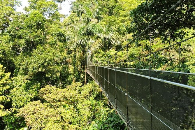 4-in-1 Arenal Hanging Bridges and Ecotermales Hot Springs Tour