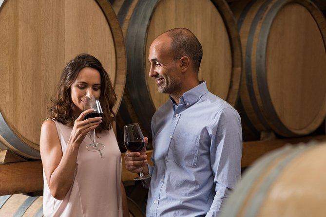 Experiencia de medio día en la región vinícola (todas las tarifas de degustación incluidas)
