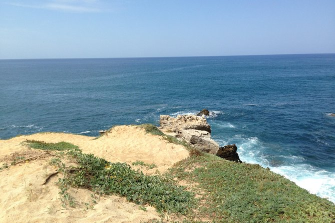 Beaches Dolphins And Viewpoints Discovering The Hidden Port By Sea And Land