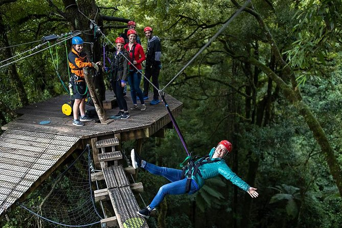 Zipline Adventure through Native Forest - The Original Canopy Tour
