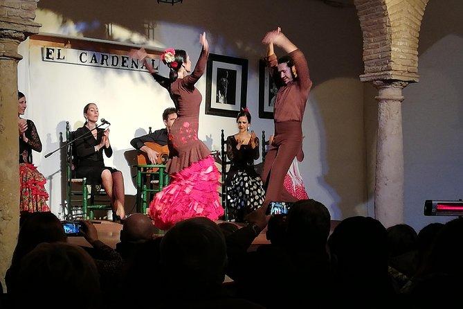 The best Tapas & Flamenco Show - City Tour, Tapas & Wine, and Flamenco Show