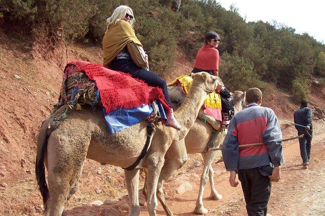 ラクダに乗ってマラケシュからプライベートハイアトラス山脈日帰り旅行