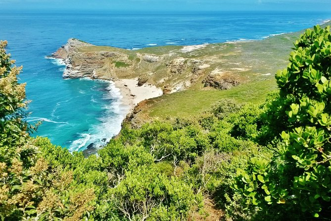 The Scenic and Historical Cape Point Tour