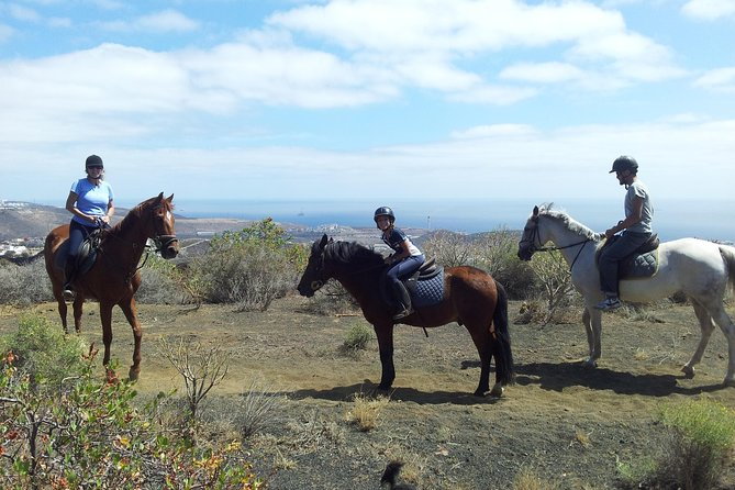 Relaxing Horse Riding Tour in Gran Canaria