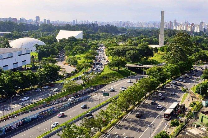 Visita guiada de arte y cultura a pie al Parque de Ibirapuera