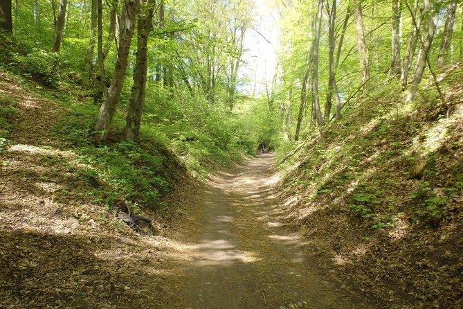 Masurian Lake District Cycling Trip from Warsaw