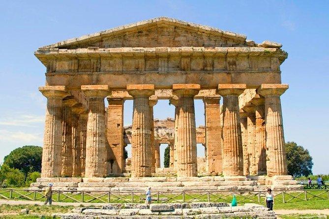 Guided visits in Paestum:Bufala Mozzarella's organic farm+Greek Temples,max 6pax