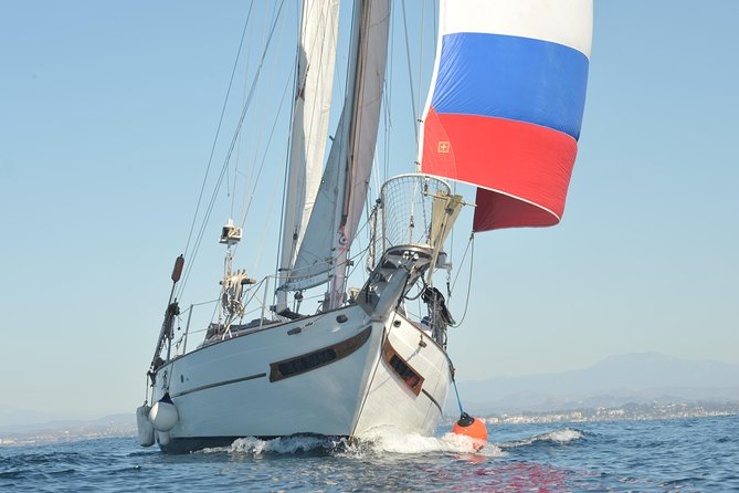 Private San Diego Day Sailing Adventure photo 16