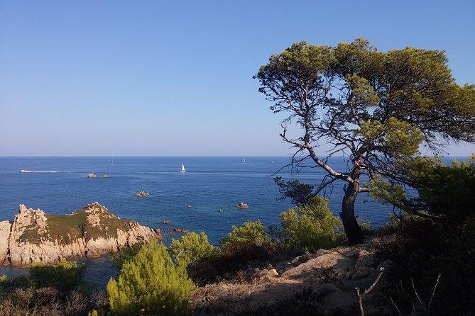 St Tropez and around