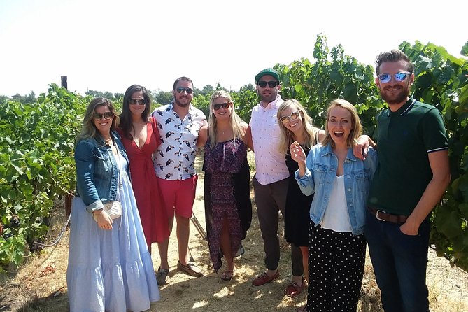 Wine Country Small-Group Tour from San Francisco with Tastings