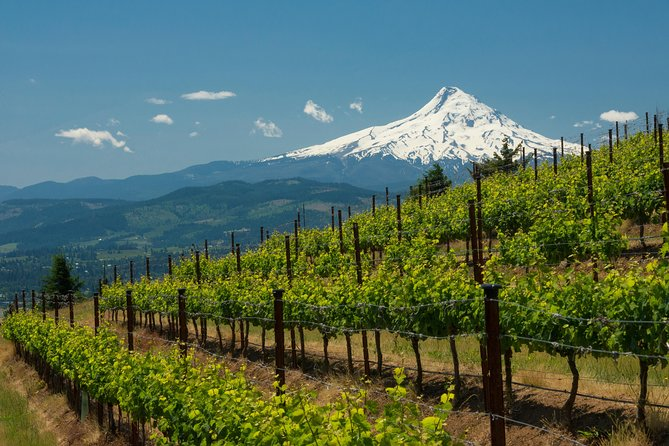 White Salmon Whitewater Rafting, Columbia Gorge, & Wineries Tour from Portland photo 7
