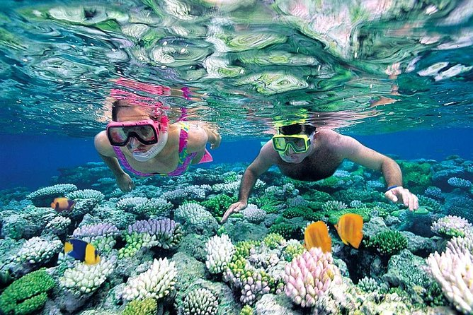 Best Snorkeling in Tanjung Jepun and Blue Lagoon