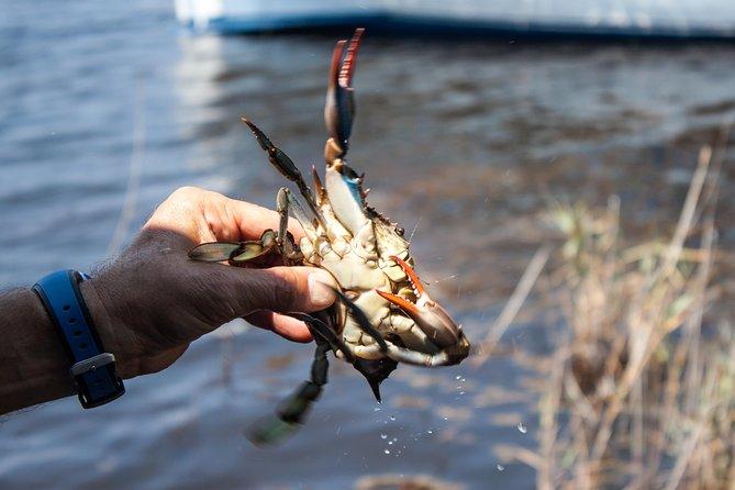 Crabbing Expedition