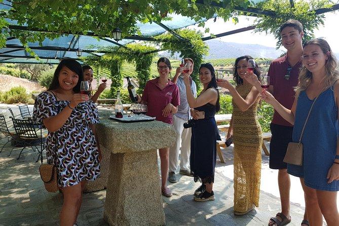 Vale do Douro para amantes de vinho com visita a 3 vinhedos e almoço em uma vinícola