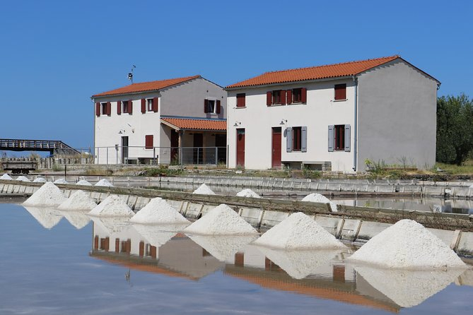 2 hours guided tour of Nature park Strunjan